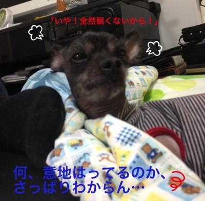 Image_7